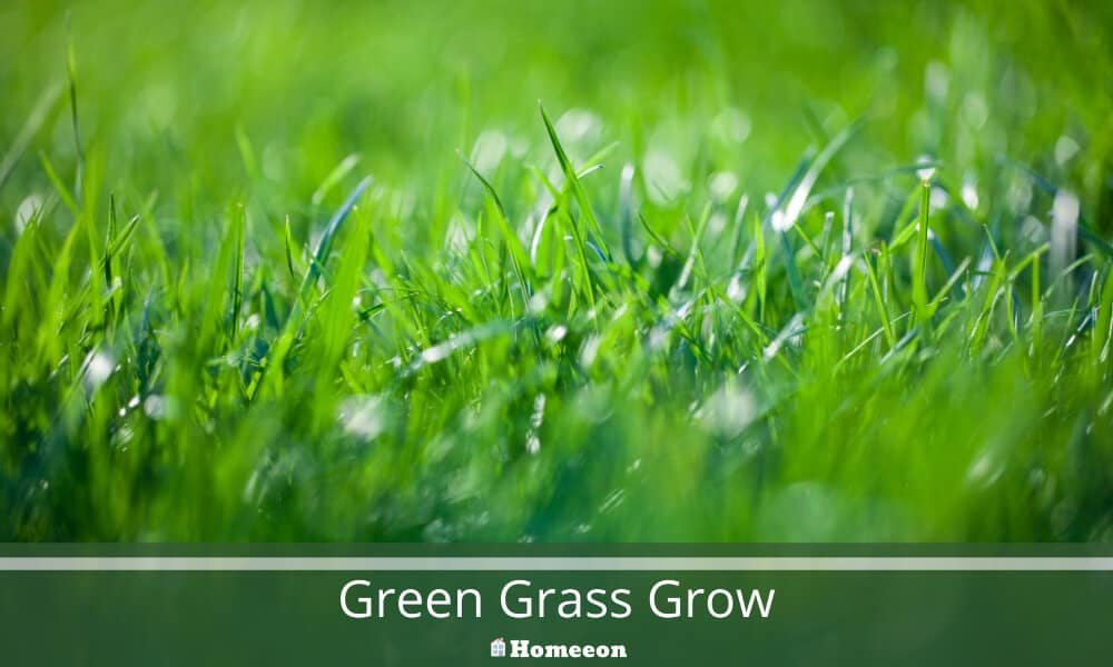 Green Grass Grow