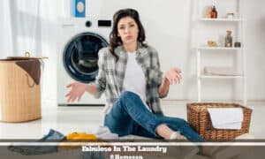 Fabuloso In The Laundry