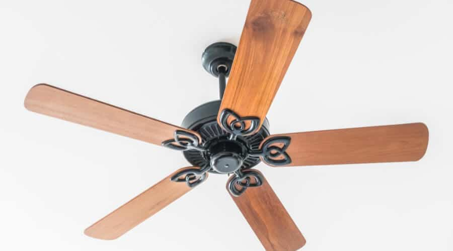 Purchase The Right Fan
