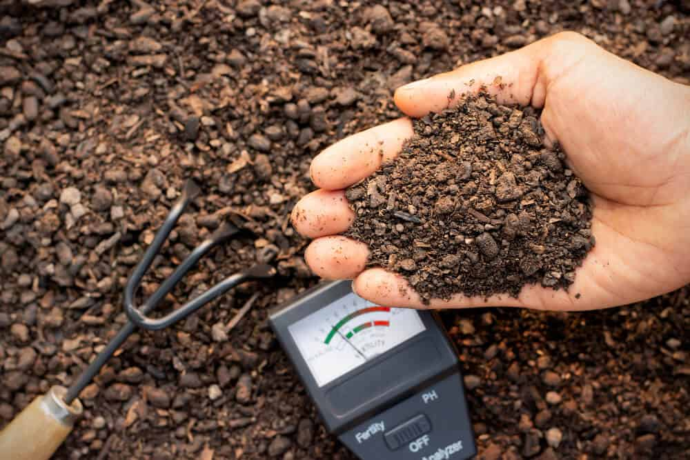 Moisture meter for soil plants lawn and home.jpg