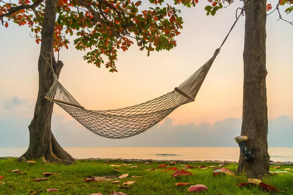 Best Portable Hammock Stands For Camping