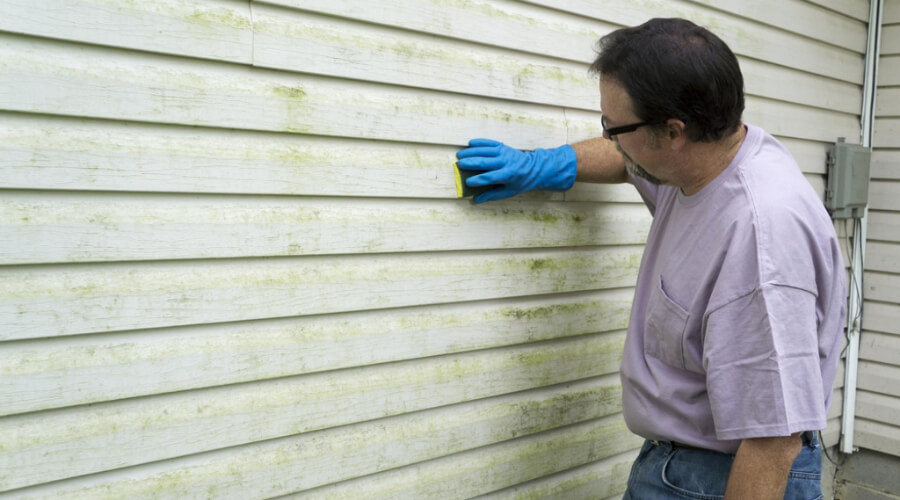 Simple Steps To Remove Stains From Vinyl Siding