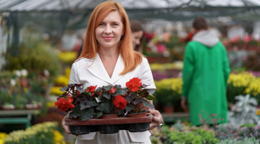 Factors That Influence The Best Time Of The Day To Plant Flowers