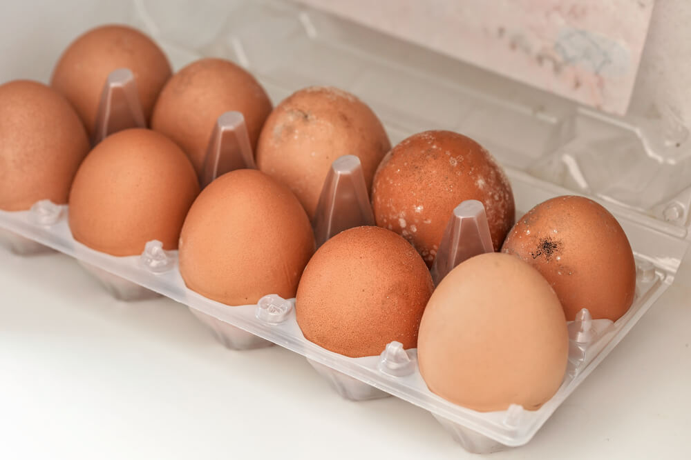 Eggs Have Gone Bad