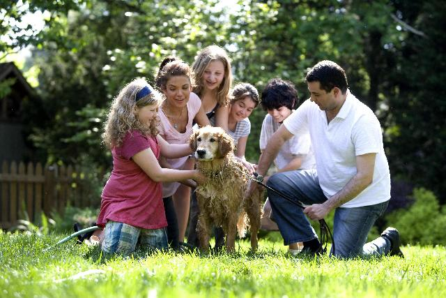 White-American-Family-Image